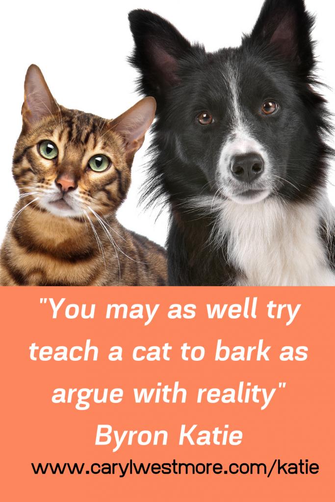 Can't teach a cat to bark